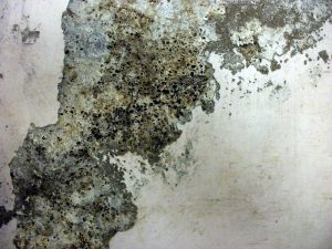 Grunge Texture granite chipped paint wall rough dirt surface photo wallpaper