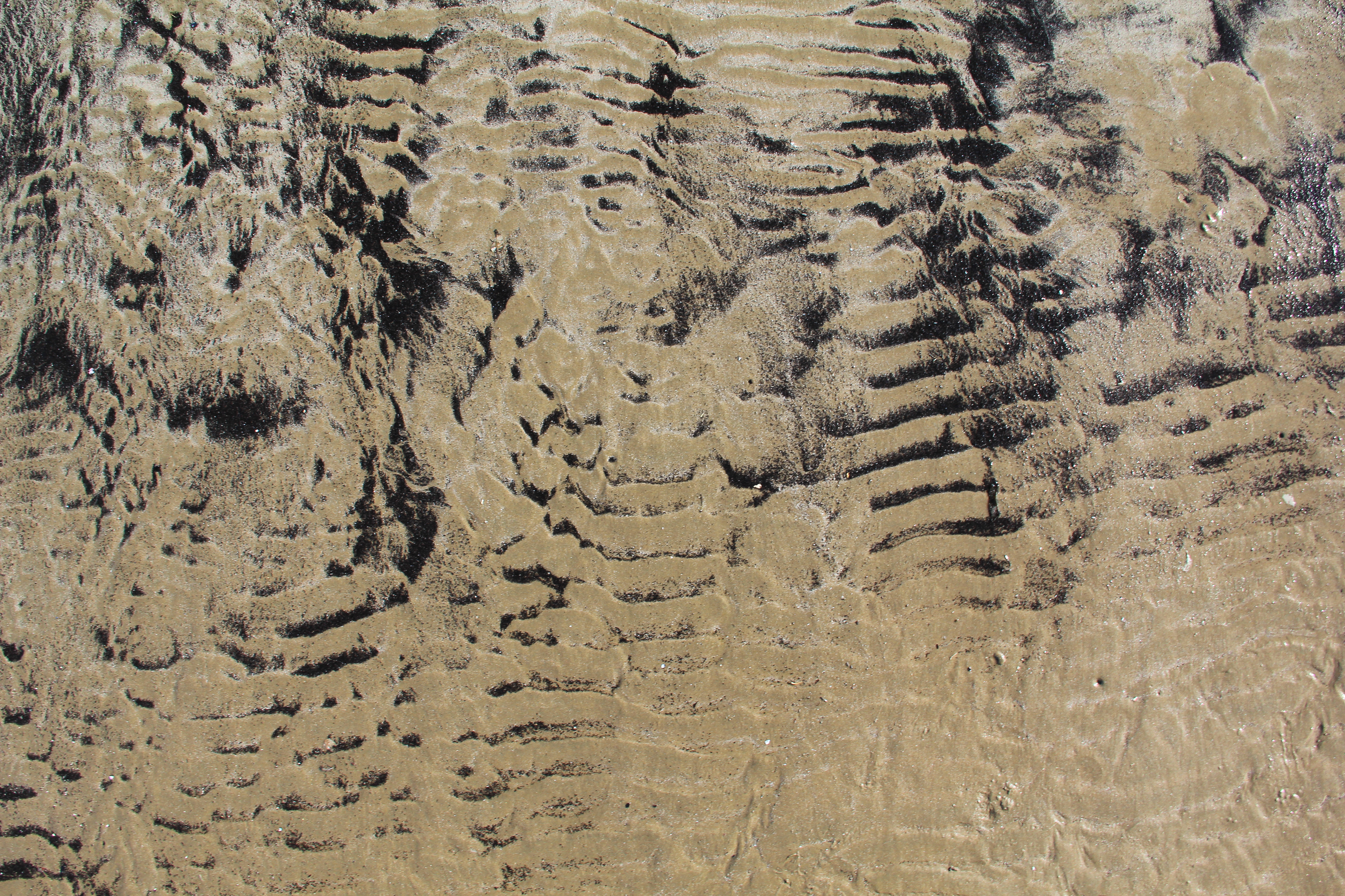 sand texture rippled black beige wallpaper photo beach