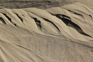 TextureX sand dune texture ripple wind sandy dirt soft white beach Texture