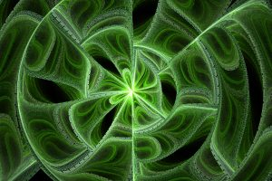fractal texture green leaf spin detail abstract wallpaper busy life stock