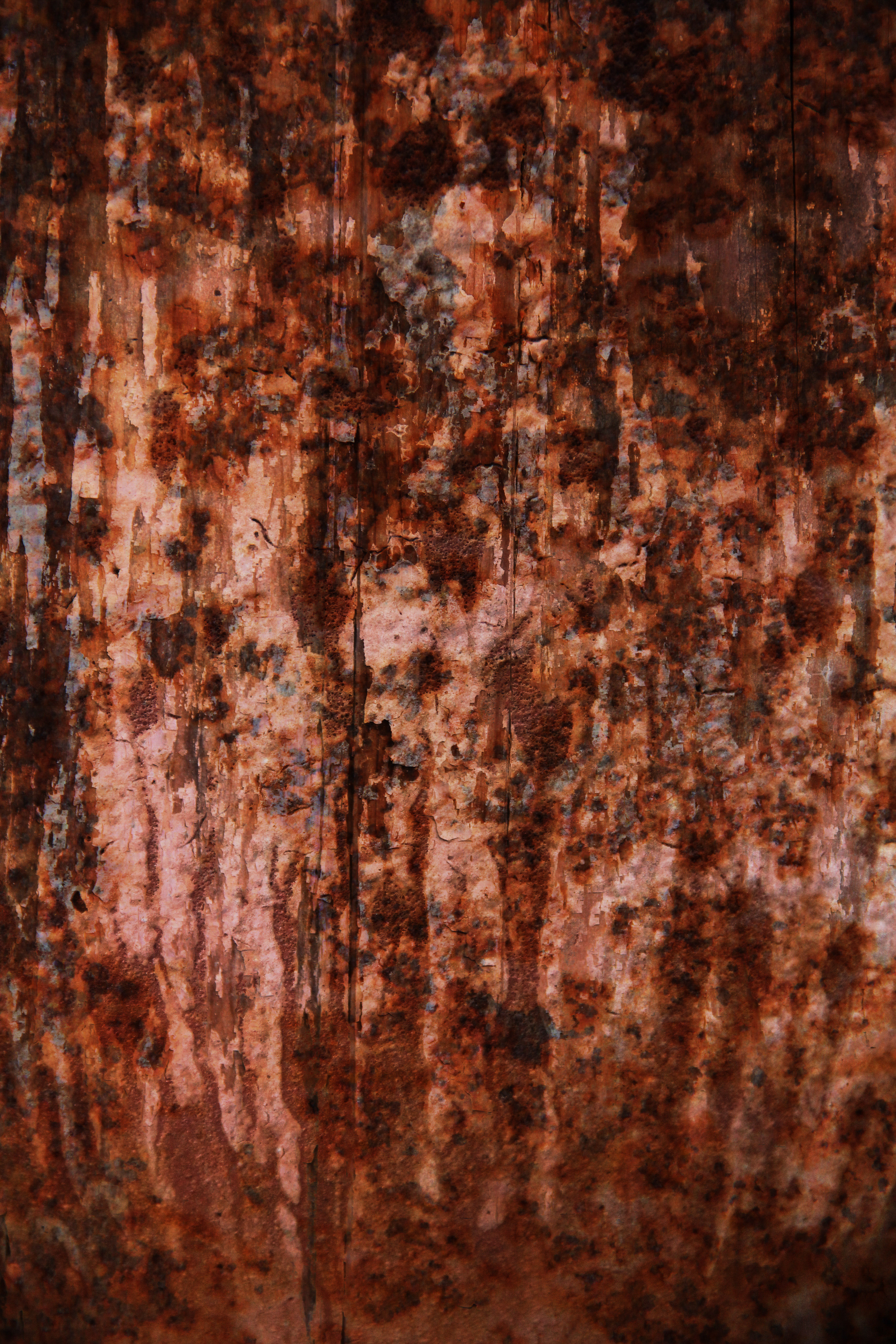 Grunge Texture Horror Ugle Rough Surface Background Red