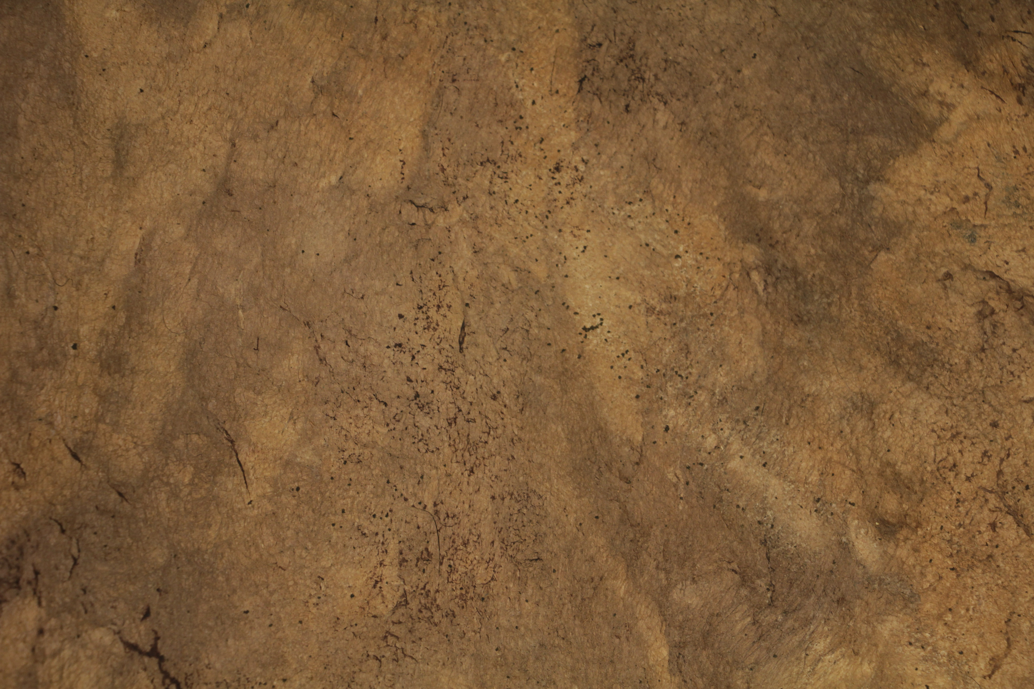 Leather Texture Spotted Rough Grunge Bound Journal Photo