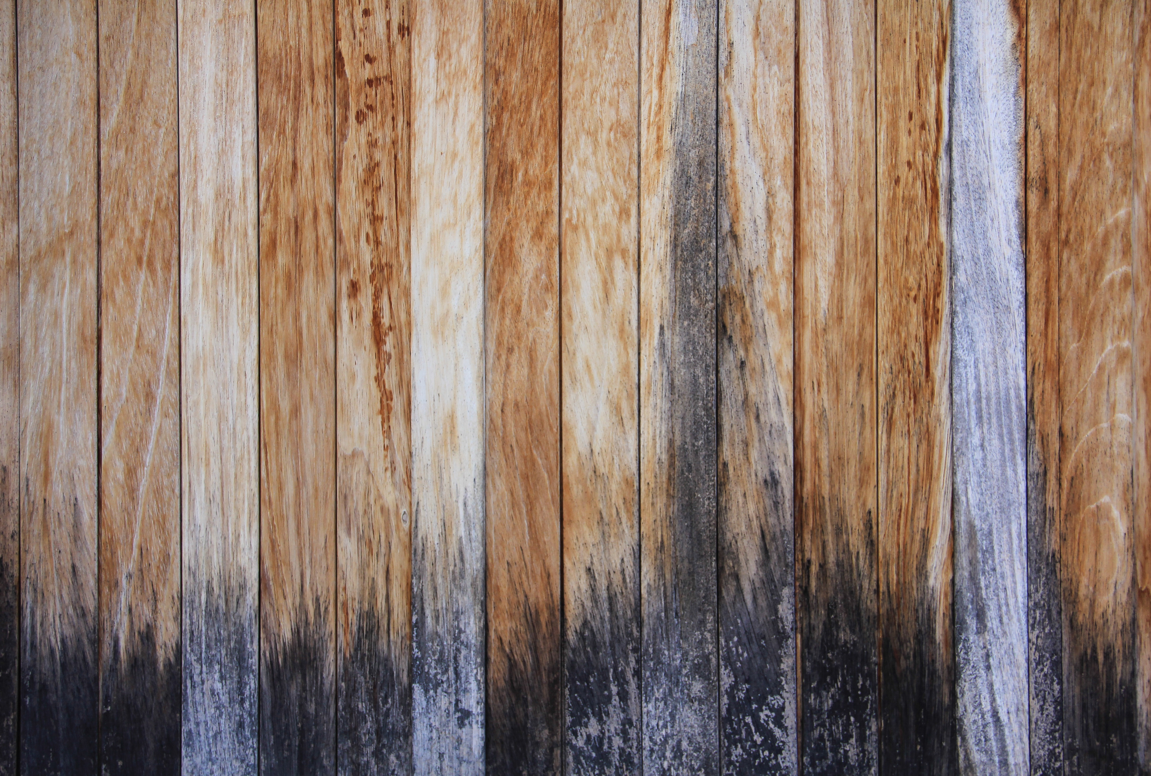 Wood texture fence stained multi colored stock wallpaper texturex wood texture fence stained multi colored stock wallpaper texturex free and premium textures and high resolution graphics voltagebd Choice Image