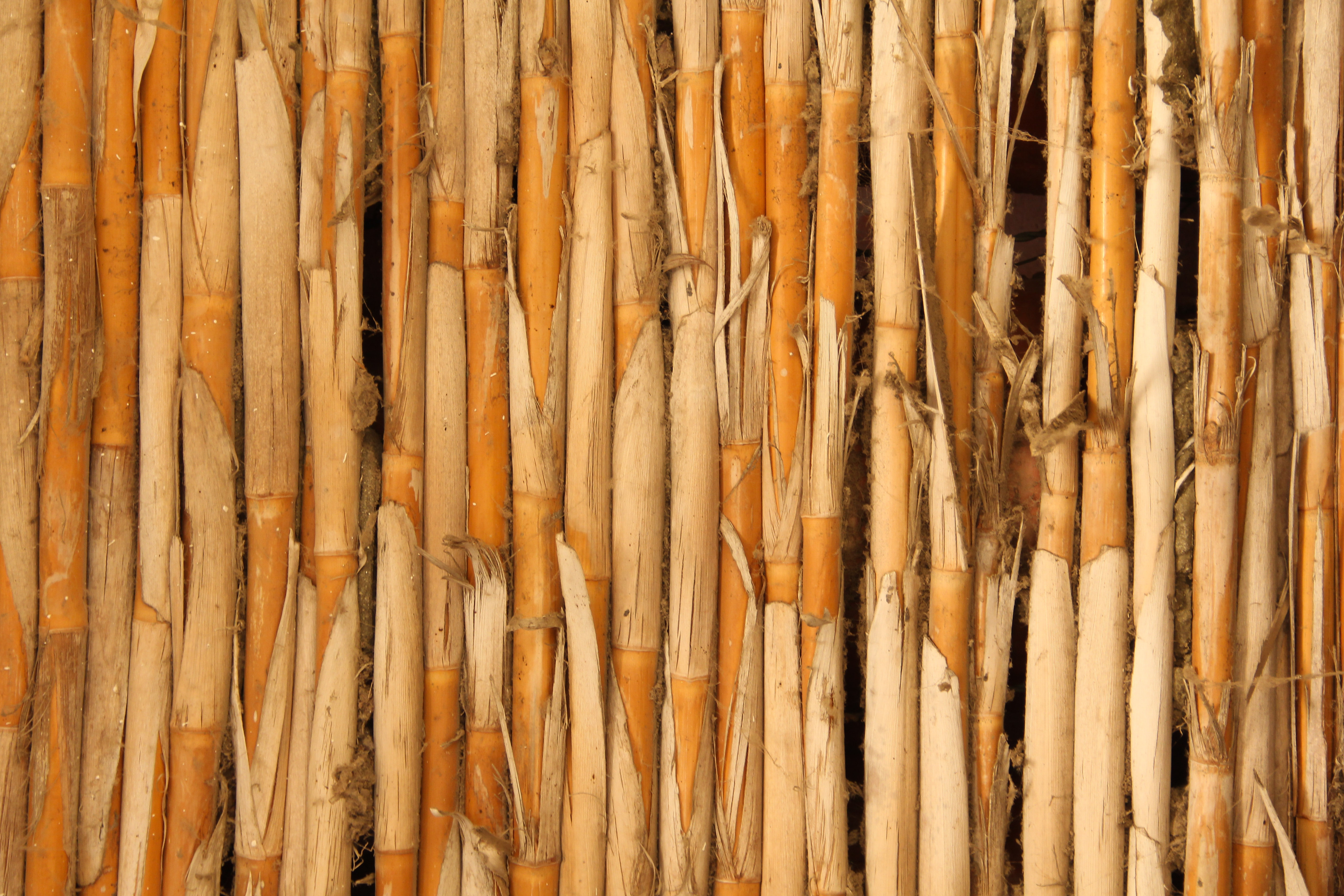 Wood Textures Archives Texture X